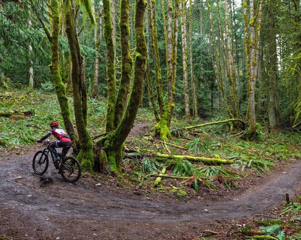 Cowichan Valley mountain biking