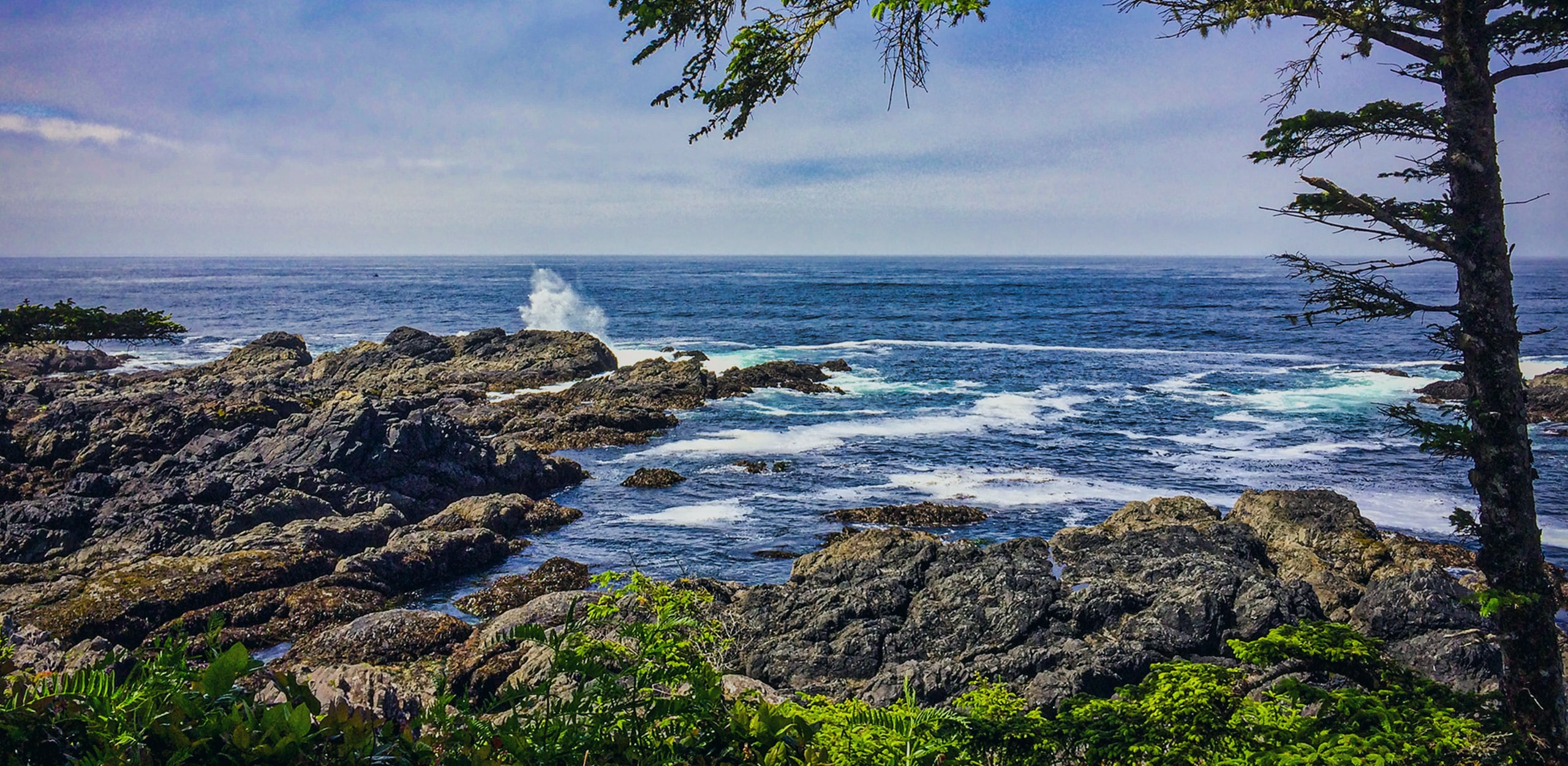 Ucluelet waterfront